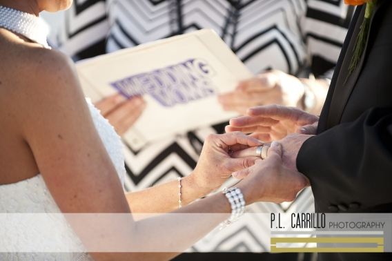 Shannon_and_Peter_a_Tradewinds_Island_Grand_Resort_Wedding_0114 copy