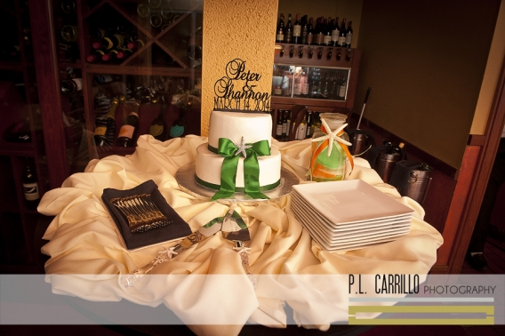 Shannon_and_Peter_a_Tradewinds_Island_Grand_Resort_Wedding_0208 copy